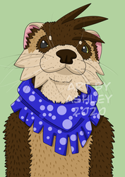 Monty the Ferret wearing a Bandanna