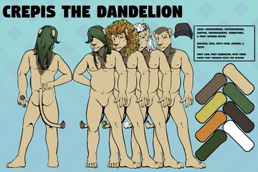 Crepis the dandelion
