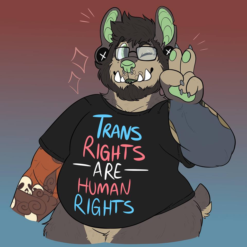 Transgender rights!