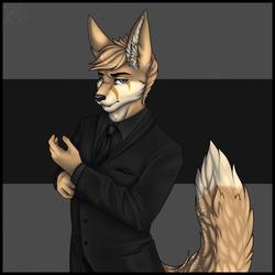 [COM: Lorena] Black Suit