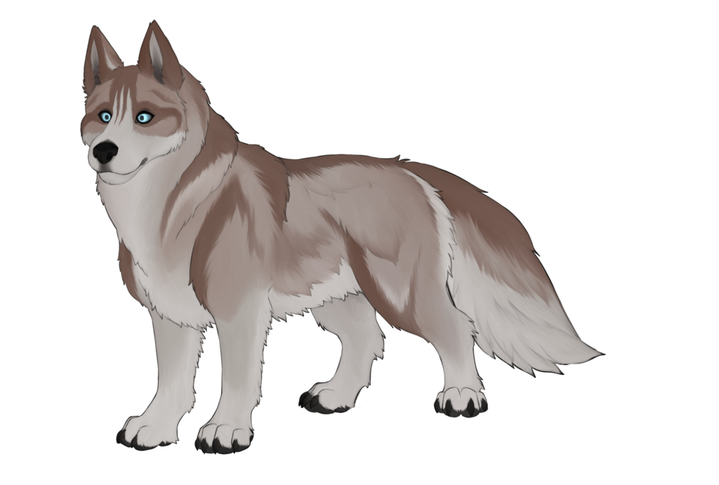 Dogust #1: Siberian Husky