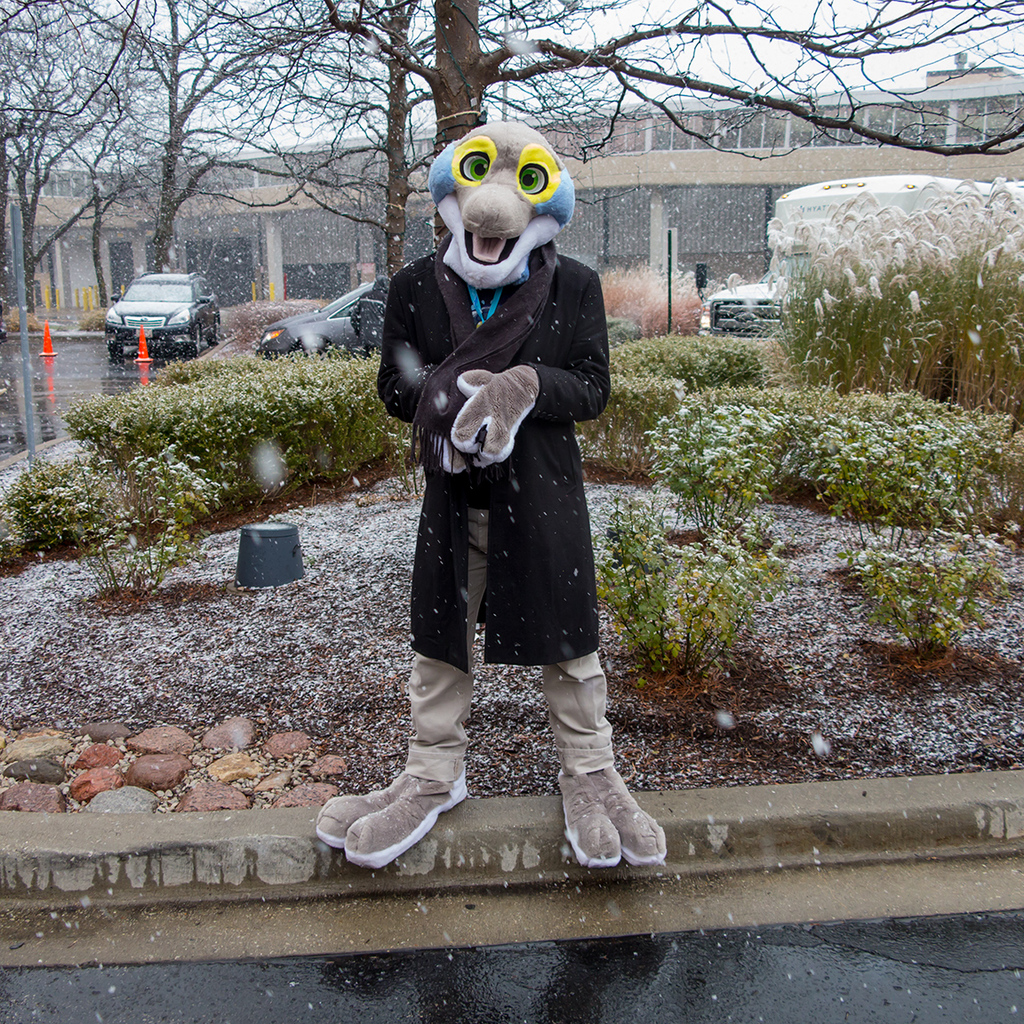 Most recent image: Snow!!!