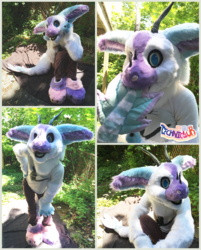 Stockings The Angel Dragon Partial