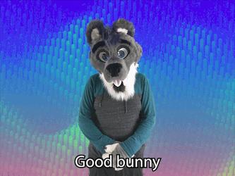 """""""Good bunny"""" ASL gif"""