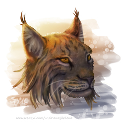 Just lynx things