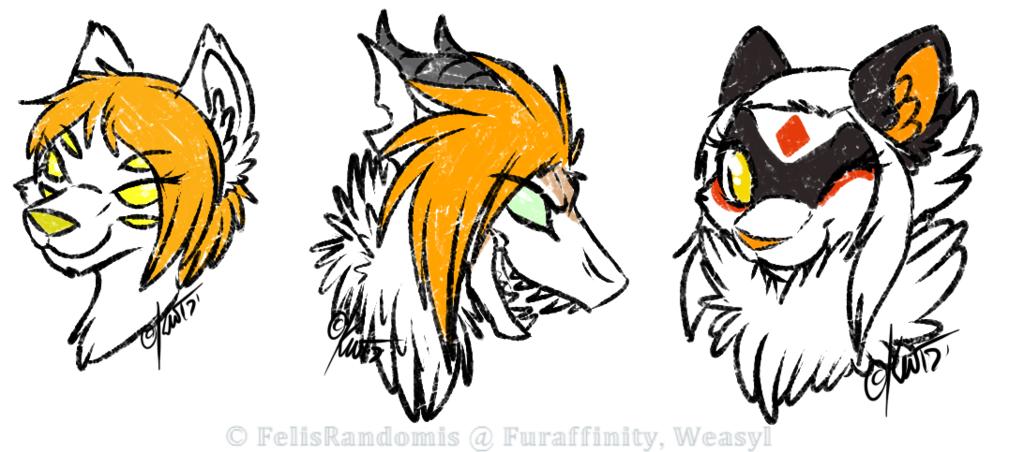 Cow101 Head Sketches