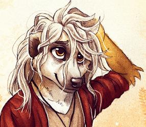 Messy Hair Meerkat