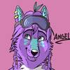 avatar of AngelTribalWolf