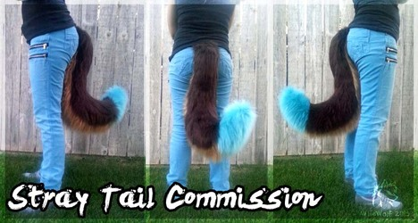 Stray Tail Commission