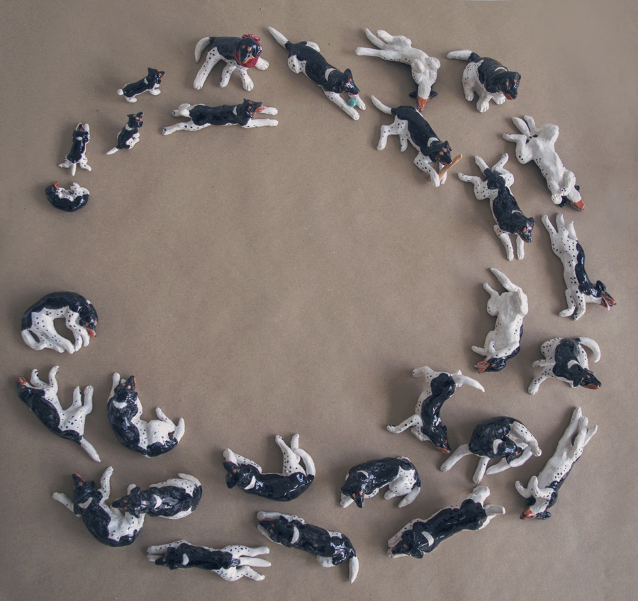 Circle of Dog
