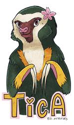 Tica Badge