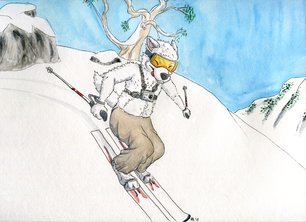 Diego Skiing