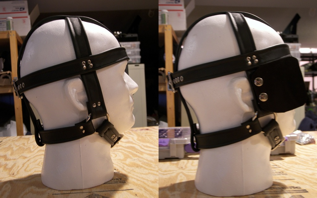 Halter with Blinkers
