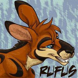 New roo icon