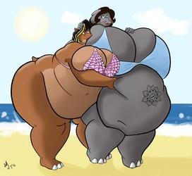2 Fatties, One Beach