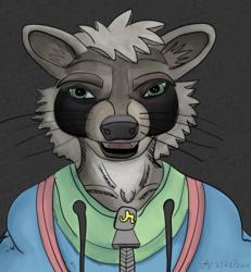 Poly (raccoon) portrait