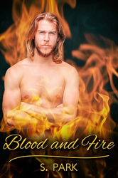 Blood and Fire - new erotic romance novel