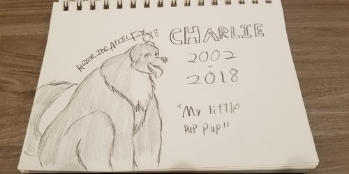 Rest in Peace, My dog, Charlie. 2002-2018
