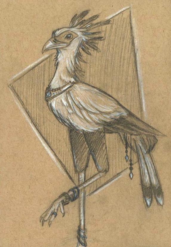 Decorated Secretary Bird
