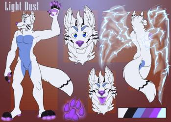 Light Dust Reference Sheet