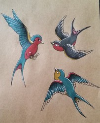 A Bundle of Birds