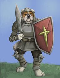 bulldog knight