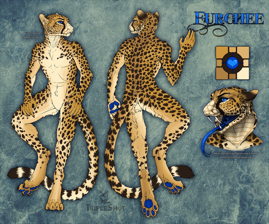 Furchee Reference Sheet