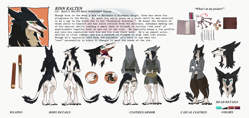 [Commissioned] Rinn Character Reference Sheet