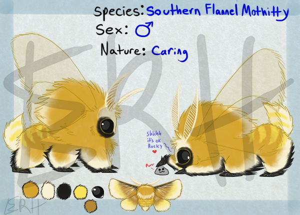 Southern Flannel Mothitty [com]