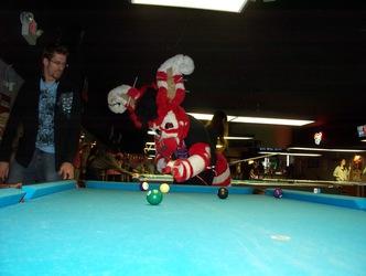 Fursuit Billiards, Bro