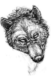Sketch again