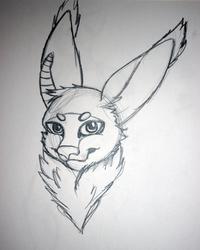 Grycabbit Sketch