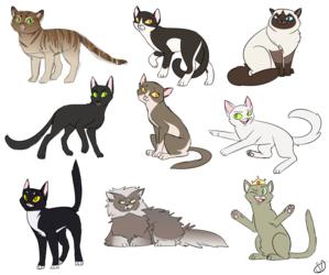 hamilton cats!