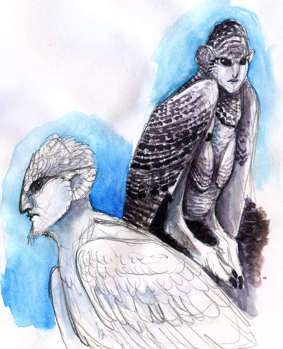 Snowy Harpies