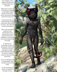 Skyclad Fae Panther
