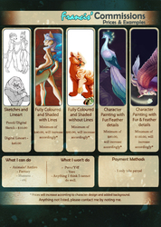 Commission Information