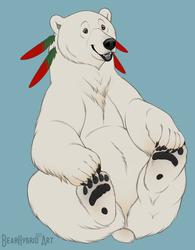 Mirabearis by BearHybrid