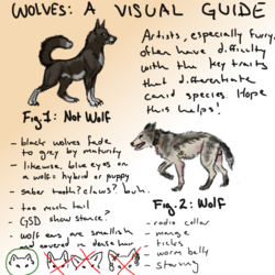 How To Wolves