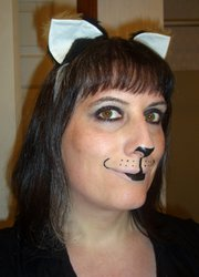 Simple kitty makeup 4/27/2012
