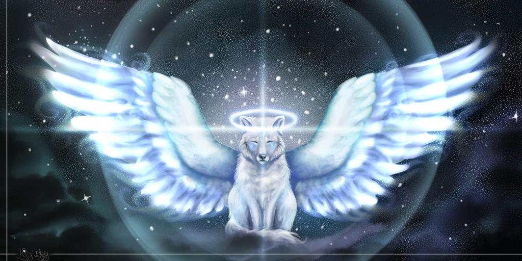 Wings of stars