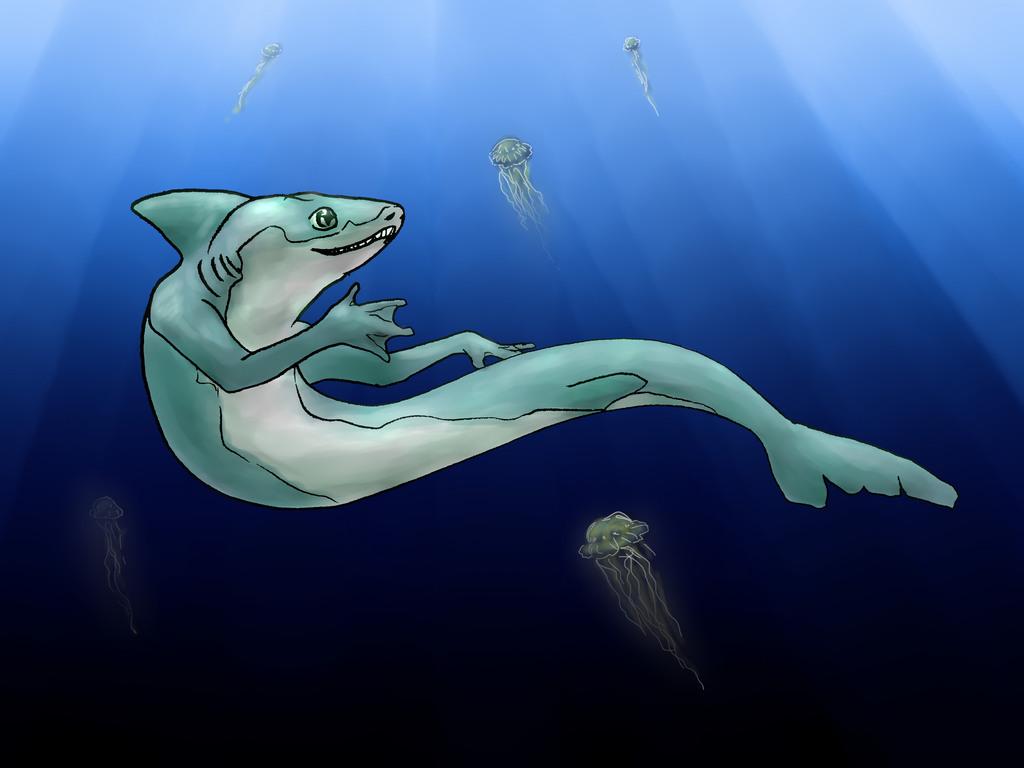 Hi, My Name Is Shark..!