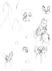 (2009) More Thumbnails