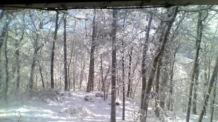 My backyard when it snows