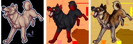 [c] Derpy Dog Base
