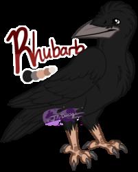 Rhubarb - Sam's Companion