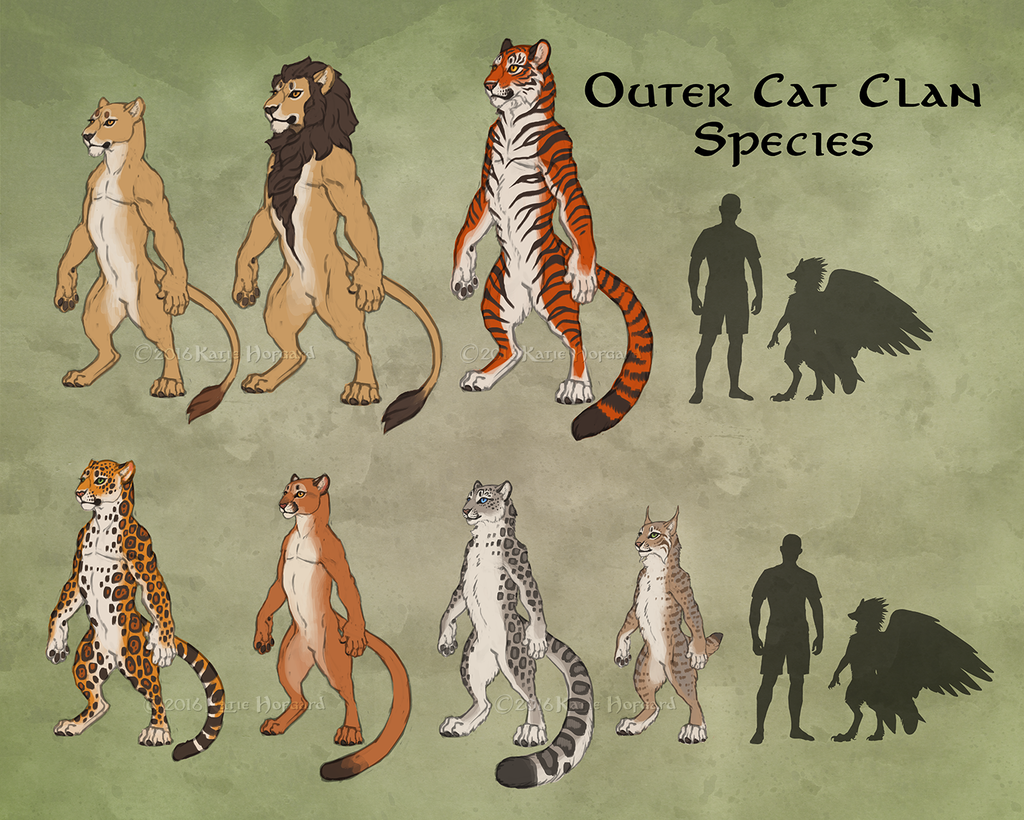 Featured image: Outer Cat Clan Overview
