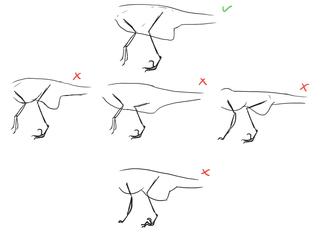 Raptor Bodies
