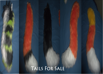 limited 4 tails remain for sale