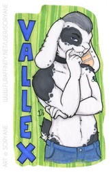 Valex - Waist Up Badge
