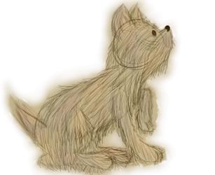 Doggy (Finished)